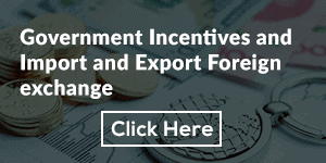 Government Incentives and Import and Export Foreign exchange